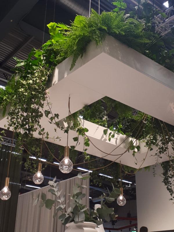 innogreen viherkasvit katto