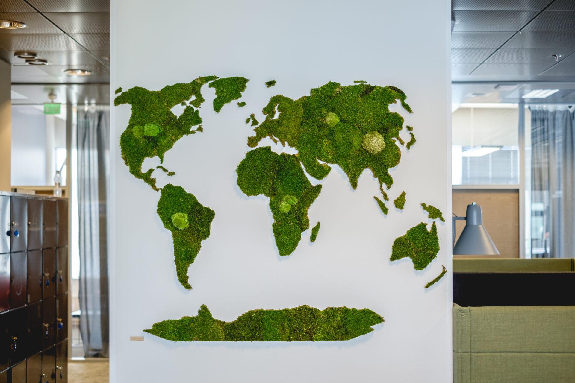 biodiversiteetti luonto